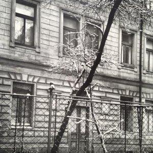 Josef Sudek – 7.1. Na našem dvoře, 1970
