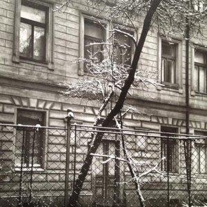 Josef Sudek – 7.2. Na našem dvoře, 1970