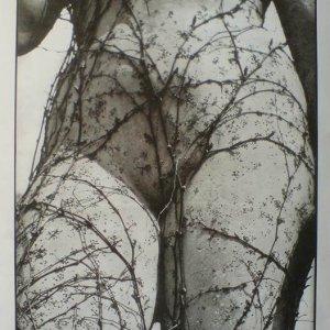 edice mezinárodní fotografie – Vilém Reichmann