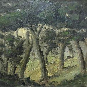 1. Frantiček Drtikol – Mystický les