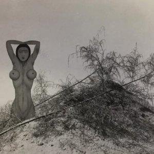 František Drtikol – Konceptuální instalace s přírodninami