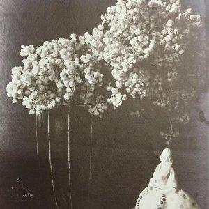 František Drtikol – Zátiší s kyticí ve váze